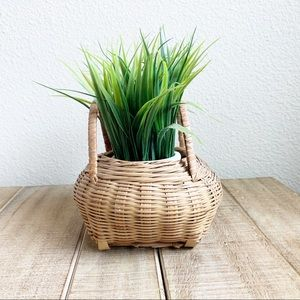 Plant with wicker basket planter